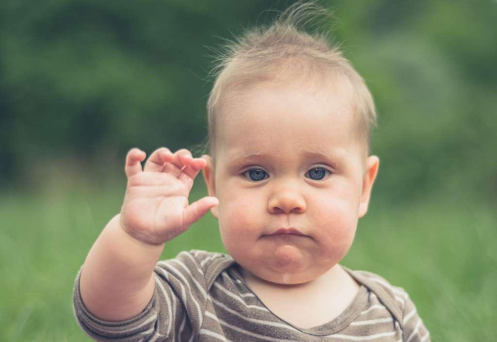 De plus en plus de parents de petits enfants qui ne parlent pas encore utilisent une langue des signes simplifiée afin de communiquer avec eux de manière plus apaisée. © LoloStock, Fotolia