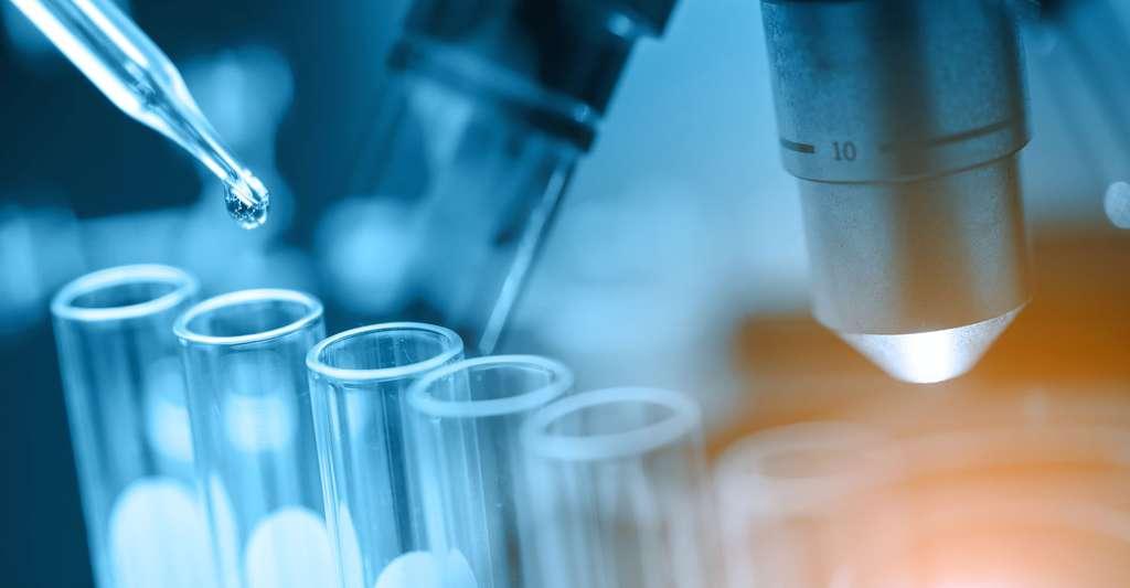 Observations et travaux en laboratoire. © Totojang1977 - Shutterstock