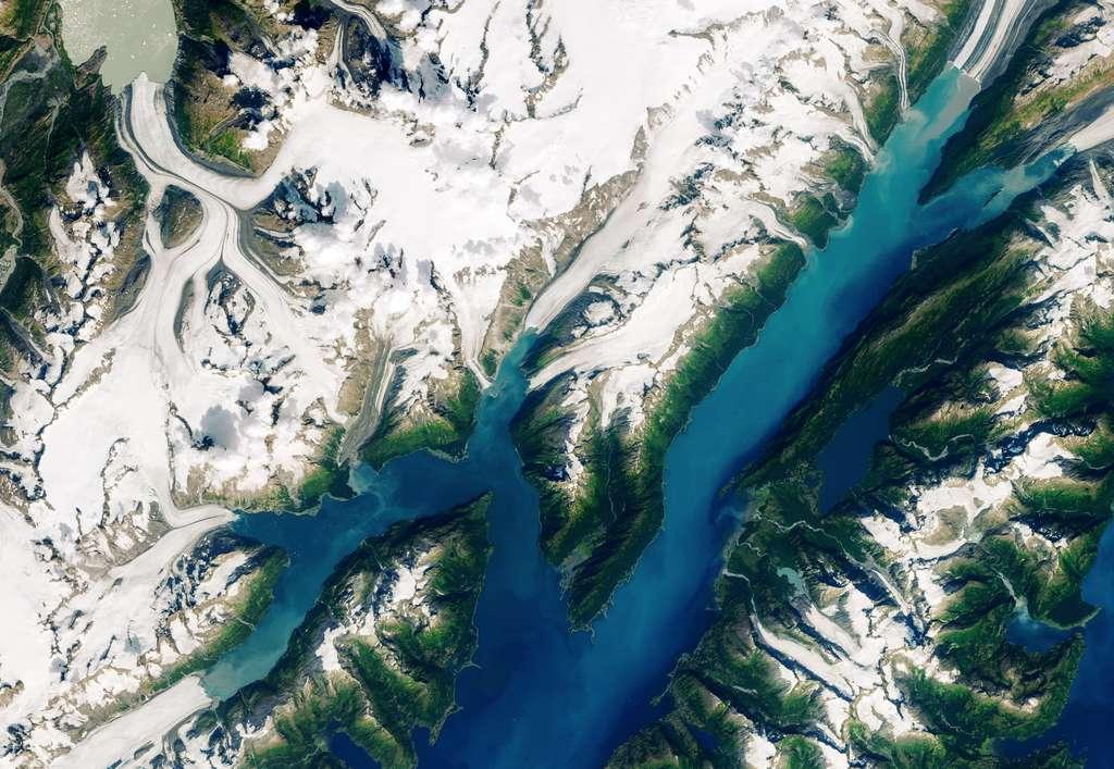 Image satellite de la région de Barry Arm, le 23 août 2019. Le retrait du glacier Barry est bien visible. La montagne menace de s'écrouler dans le fjord. © Nasa
