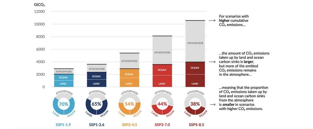 Absorption des émissions anthropiques cumulées de CO2 par les puits terrestres et océaniques d'ici 2100 selon les cinq scénarios illustratifs. © IPCC.