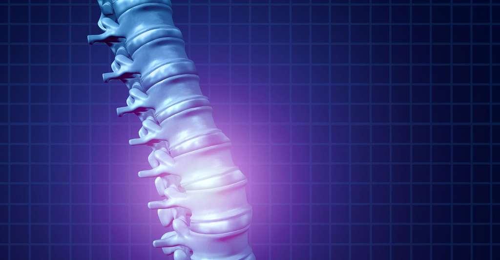 Le mal de dos à la loupe. © Lightspring - Shutterstock