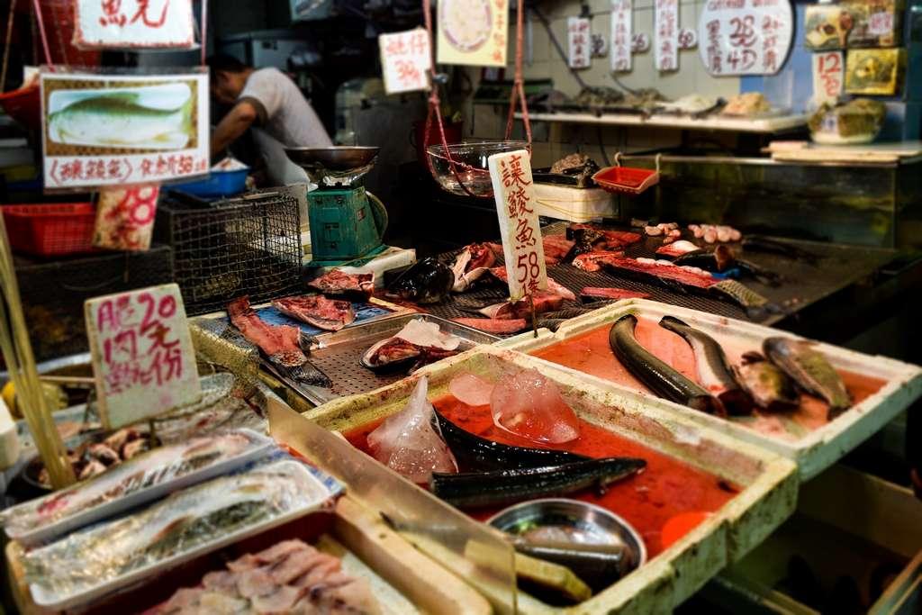 C'est sur des personnes travaillant dans un marché de gros de fruits de mer et de poissons, à Wuhan, qu'a été repéré le virus, en décembre dernier. Ici, le marché du poisson-chat de Hong Kong. © NDK100, Adobe Stock