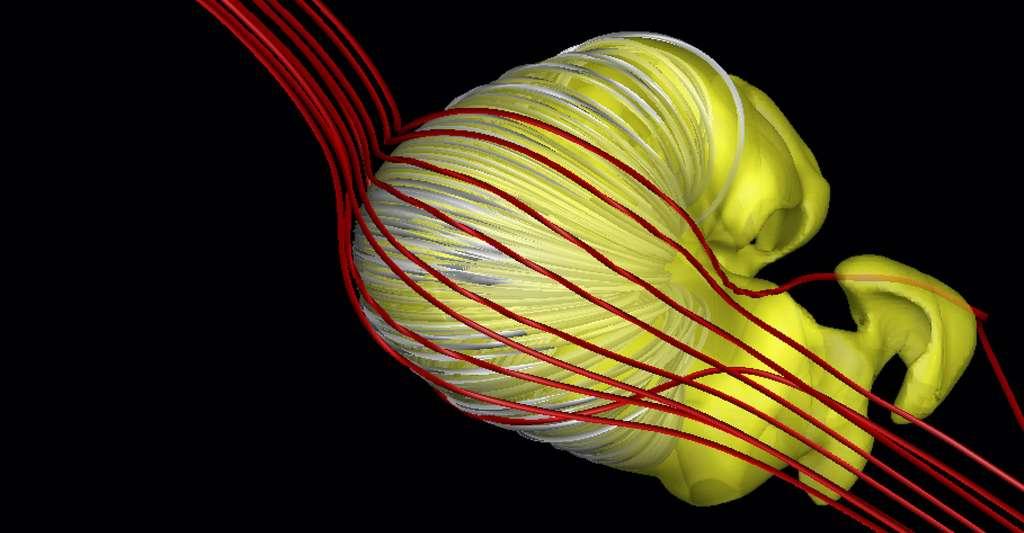 Notre héliosphère ressemblerait à ça! © Merav Opher et al., Université de Boston