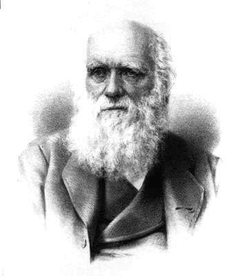 © Institut Charles Darwin International
