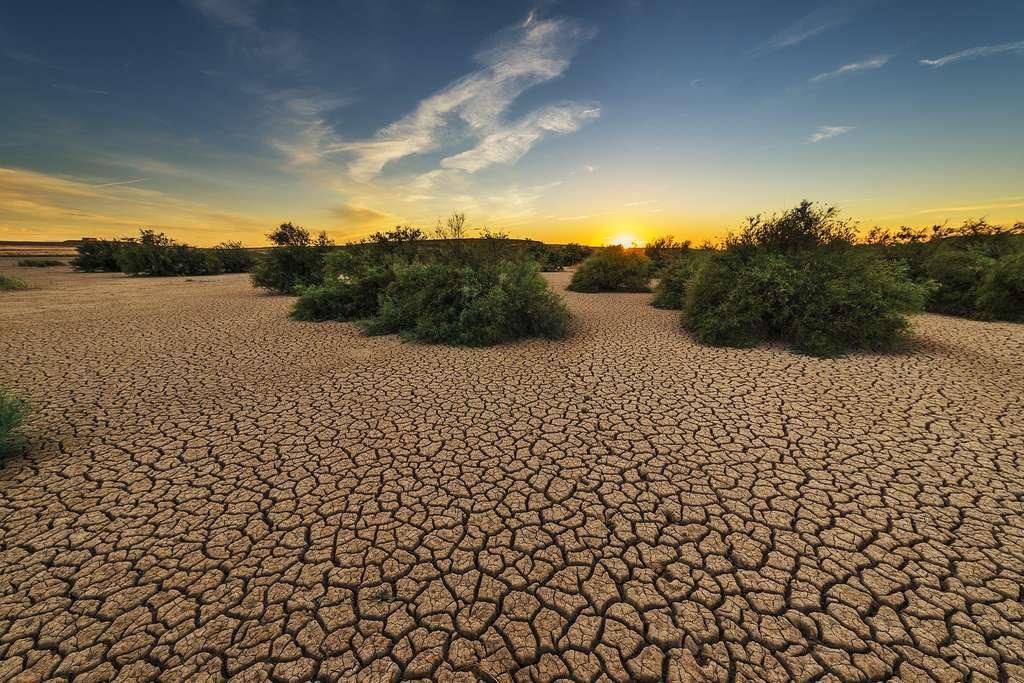 La terre craquelée : signe de sécheresse. © Josealbafotos, Pixabay, DP