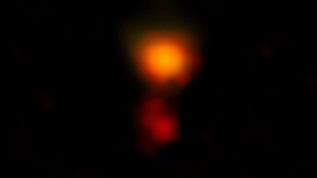 Une image radio en fausses couleurs de la galaxie poussiéreuse en formation d'étoiles appelée Mambo-9 qui se compose de deux galaxies en train de fusionner. © Alma (ESO-NAOJ-NRAO), C.M. Casey et al. ; NRAO-AUI-NSF, B. Saxton