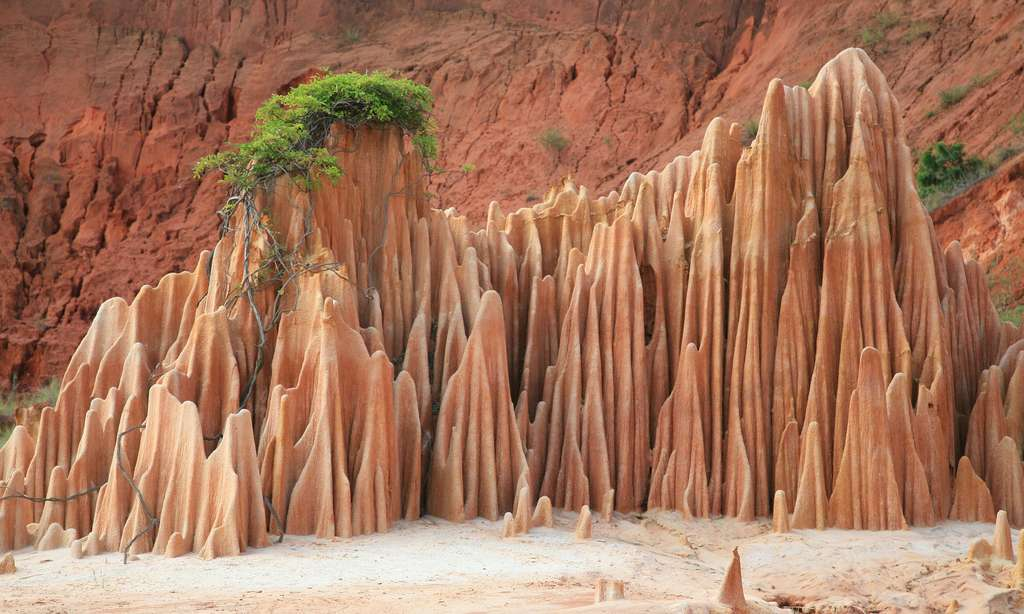 Les Tsingy rouges de Madagascar, près d'Antsiranana