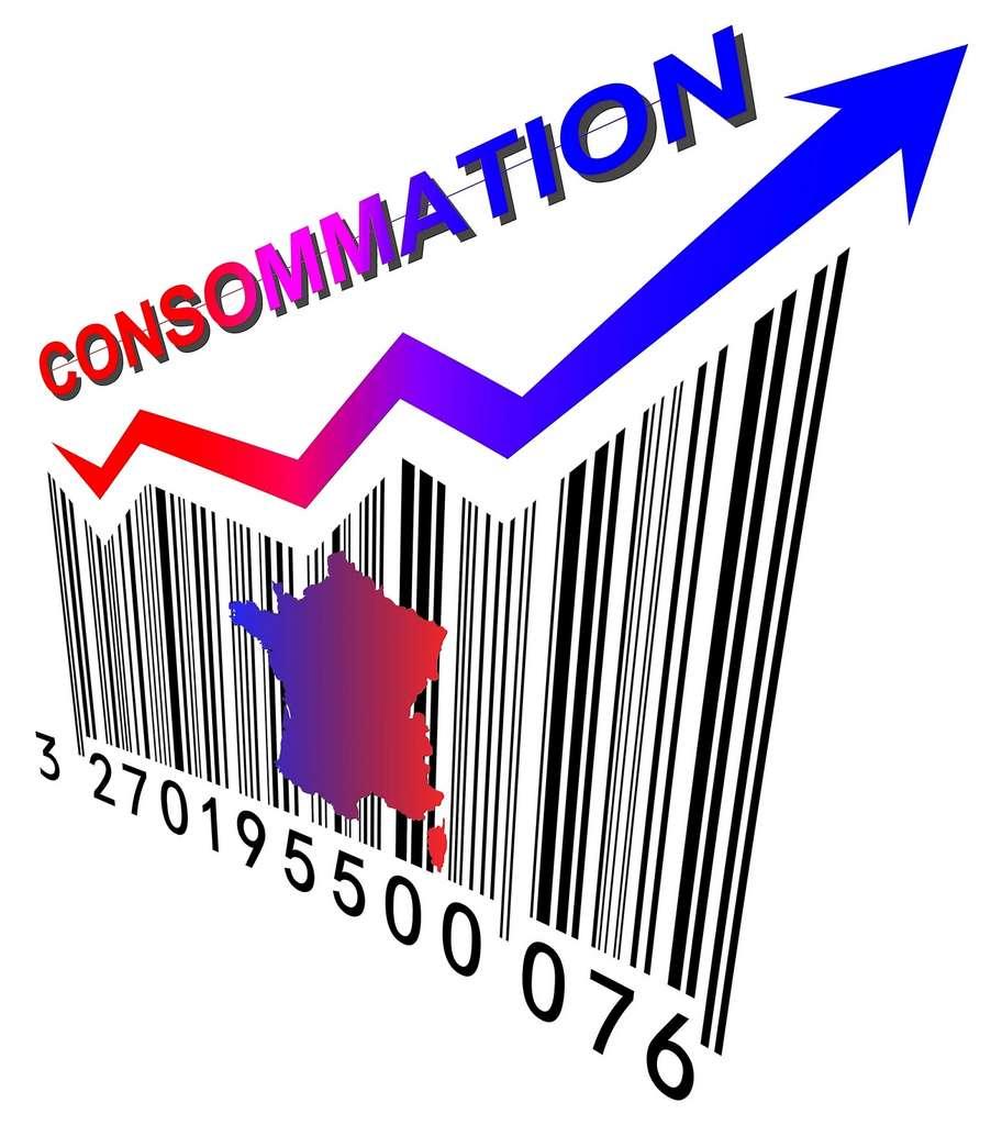 Actuellement, les taux d'intérêt des crédits à la consommation sont très bas. © Franck Thomasse, Fotolia