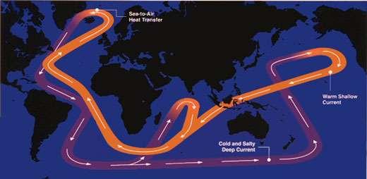 Par opposition au Gulf Stream et aux courants marins entraînés par les vents, la circulation thermohaline (THC) est principalement verticale, et provoquée par la formation et la plongée en profondeur (jusqu'à 5000 m) d'eau au niveau du Groenland, de l'Islande et de la Norvège. © Rapid Change Climate, Natural environment research council