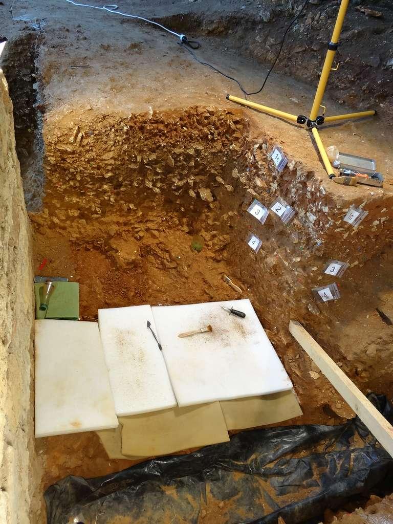 La zone dans laquelle le squelette néandertalien La Ferrassie 8 a été découvert. © Antoine Balzeau, CNRS, MNHN