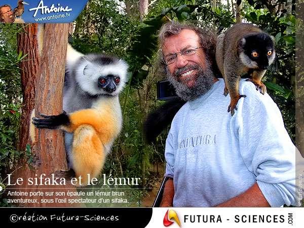 Antoine à Madagascar