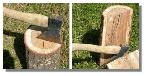 Figure 22. Utilisation d'une hache pour fendre un rondin de bois de chêne. On observe (à gauche) des fentes radiales apparues au cours du séchage au niveau des rayons. © Photo R. Prat