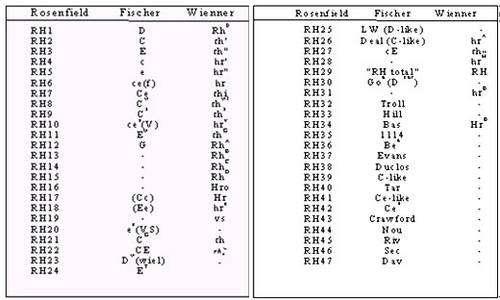 Tableau des différents antigènes des groupes rhésus. © DR