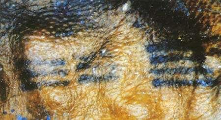 photo Ötsi © M. Unterdorfer: divers tracés sur le dos