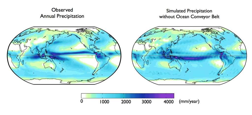 Sur l'image de gauche, les précipitations moyennes par an (en mm). Sur l'image de droite, les précipitations annuelles prévues par les modèles climatiques si l'on supprimait la circulation thermohaline : elle suggère clairement que sans la circulation océanique, les maxima de précipitation seraient plus au sud.