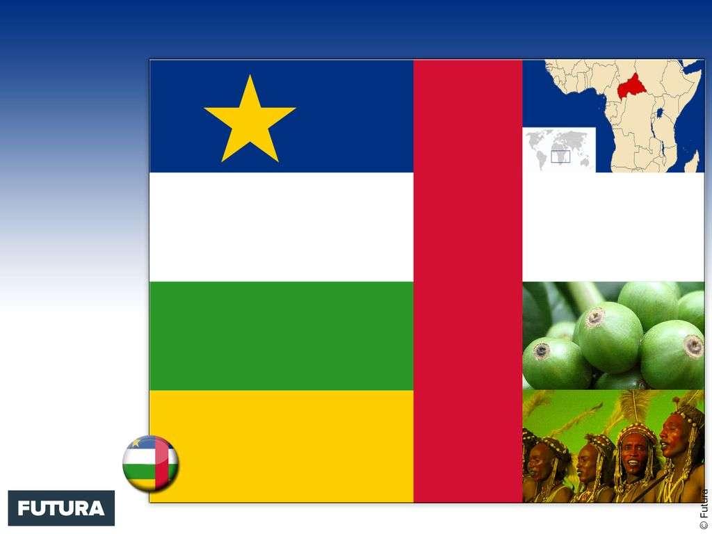 Drapeau : Centrafrique