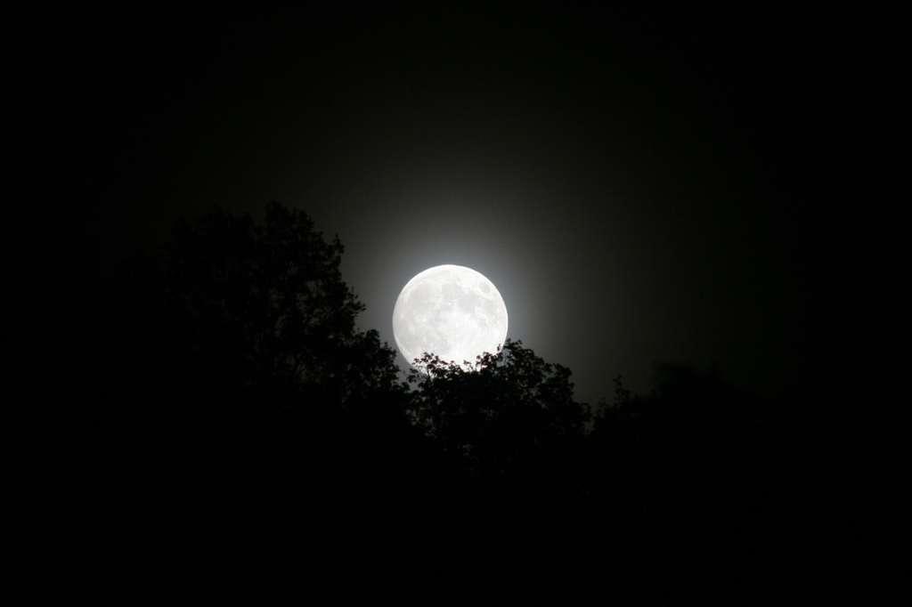 La nuit du Loup Garou