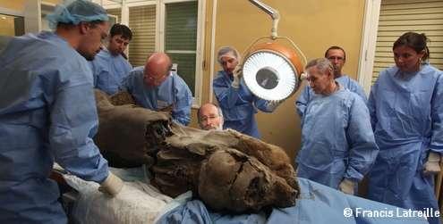 Khroma, sur la table d'autopsie, est observé par l'équipe de paléontologues. © Francis Latreille