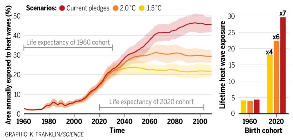 Nombre moyen annuel de vagues de chaleur que connaîtra chaque génération selon les différents scénarios de réchauffement. Les enfants nés en 2020 vivront ainsi 7sept fois plus de vagues de chaleur que les personnes nées en 1960. © K. Franklin, Science