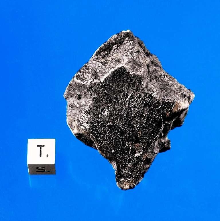 Un fragment de la météorite Tissint. © Macovich Collection-Darryl Pitt