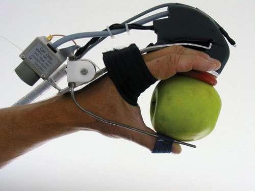 Le GLOVE : un capteur portable intégrant un spectromètre proche infrarouge miniature pour la mesure de la teneur en sucre des fruits au champ © Michel Crochon - Cemagref