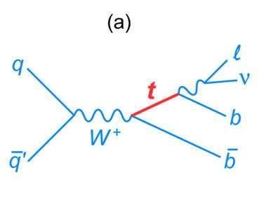 Une réaction électrofaible possible avec production d'un seul quark top. A gauche, une paire de quark-antiquark (q-q barre) s'annihile pour donner un boson électrofaible chargé W+. Ce dernier se désintègre en un quark top (rouge) et un antiquark beau (b-barre). Enfin, le quark top lui-même se désintègre en une paire lepton-neutrino plus un quark beau b. Crédit : Fermilab