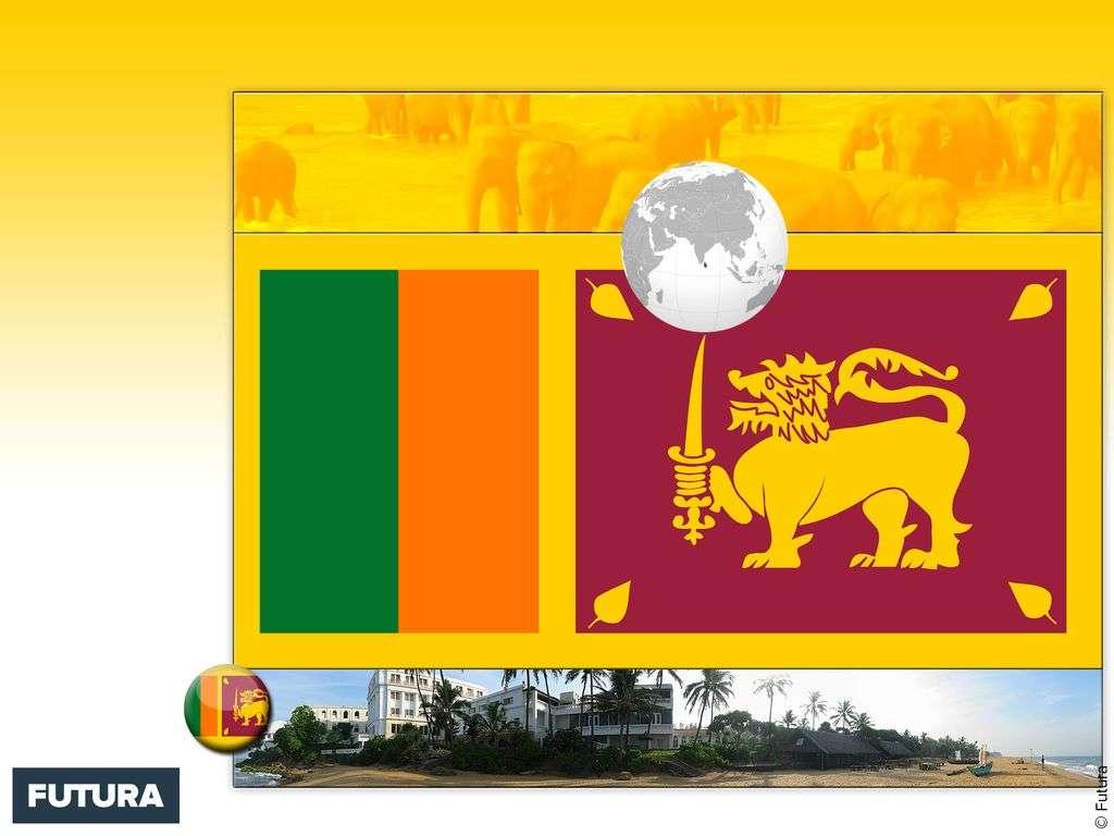 Drapeau : Sri Lanka