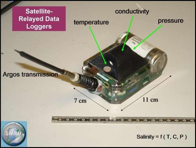 La sonde CTD-SRDL (Conductivity Temperature Depth-Satellite-Relayed Data Loggers) est destinée à être collée sur le crâne d'un éléphant de mer. Elle mesure la température, la conductivité et la pression (pressure) le long de la descente de l'animal, lorsqu'il plonge pour chasser. Les données sont traitées et compressées par un circuit électronique puis émises sur les fréquences du système Argos. La légende rappelle que la salinité peut être déduite de la température, de la conductivité et de la pression (Salinity = f(T, C, P)). © SMRU