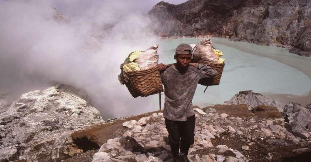 Quelle est l'utilité des volcans ? Ici, un porteur de soufre au Kawah Idjen, en Indonésie. © J.-M. Bardintzeff, tous droits réservés, reproduction interdite