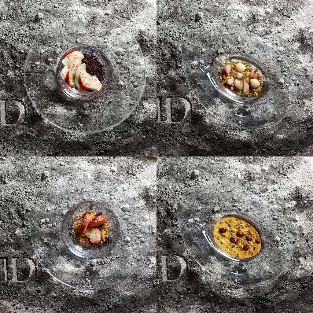 Quelques exemples de plats festifs qu'emporte Thomas Pesquet à bord de la Station spatiale internationale. De gauche à droite et de haut en bas : Cabillaud au riz noir de Camargue et piquillos ; Sarrasin au tandoori, radis et oignons grelots ; Homard breton, quinori bio aux algues, condiment citron de Menton ; Clafoutis à la pistache et griottes. © Philippe Vaurès Santamaria