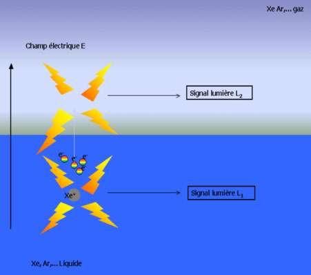 Schéma du fonctionnement d'un détecteur gaz noble double phase