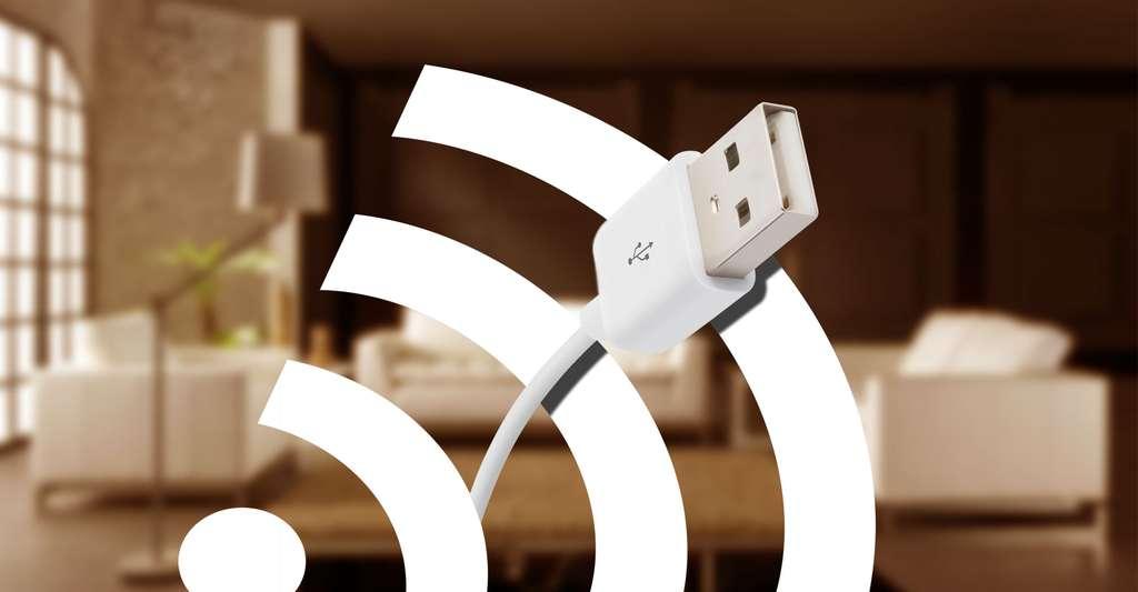 La mise en réseau d'une installation domotique peut se faire par câble BUS ou ondes radio. © Canopus49, CC by-sa 3.0
