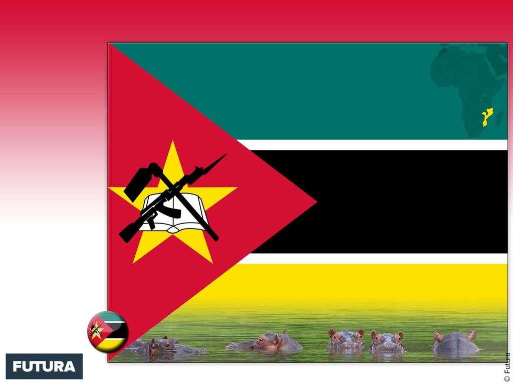 Drapeau : Mozambique