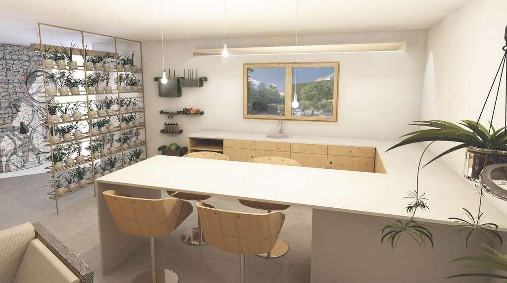 Sur cette vue modélisée du Logement Vert et Engagé présenté au Salon du logement neuf de Toulouse, un potager d'intérieur vertical composé de pots de plantes aromatiques. Et dans le fond, un vélo électrique suspendu au mur. © AMPMArchitectes