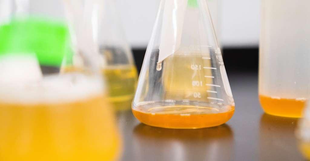Les mesures de sécurité et les procédures destinées à maîtriser les risques dépendent de la nature et de la quantité de matières dangereuses utilisées. © Elevate, Unsplash