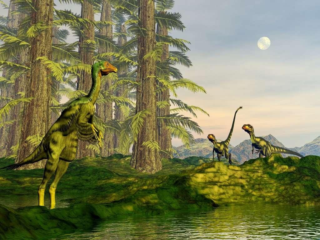 Lorsque les plantes à fleurs ont pris le dessus sur les conifères, les dinosaures n'ont pas réussi à s'y adapter. Les chercheurs trouvent des corrélations négatives qui montrent que le changement a nui aux dinosaures sans pour autant l'être de manière significative. © Elenarts, fotolia