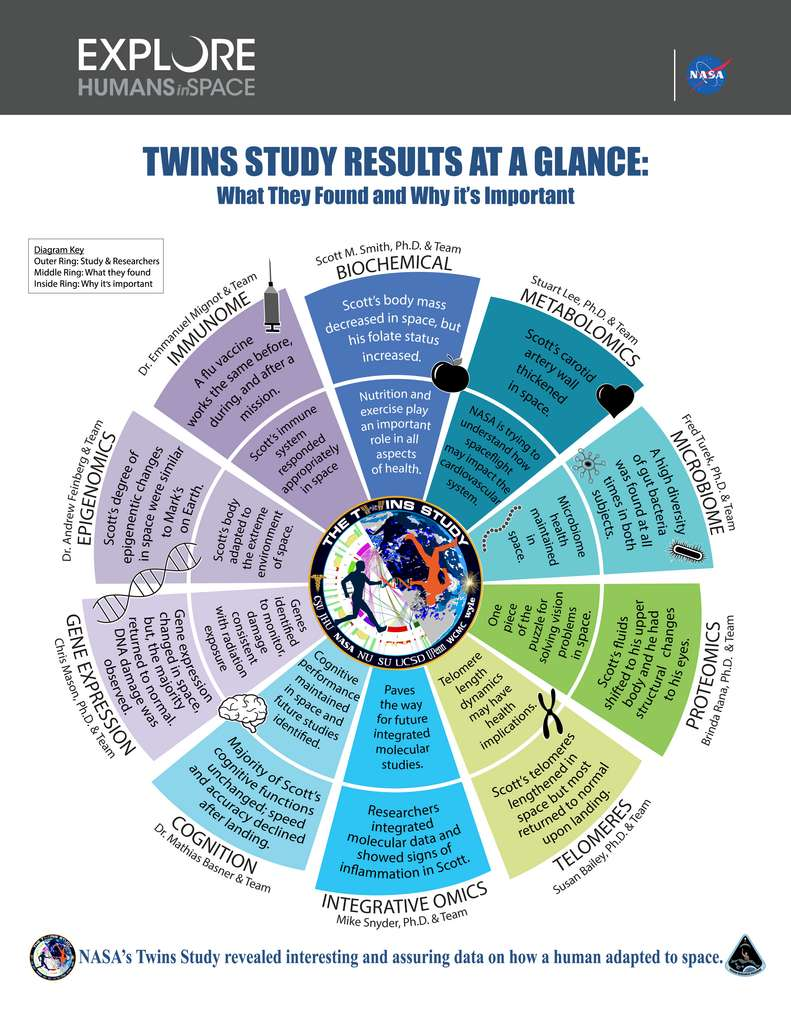 En anglais, graphique résumant ce que les chercheurs ont appris et découverts dans le cadre de The Twins Study. © Nasa