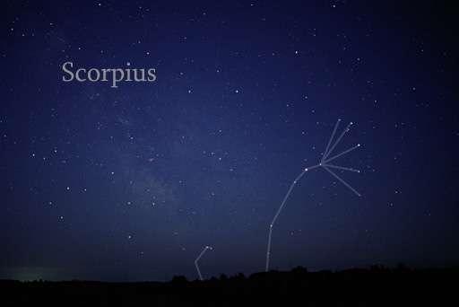 Avec 13 étoiles aussi brillantes que celles de la Grande Ourse, la constellation du Scorpion n'a pas besoin de ses voisines pour se faire connaître. © Till Credner, Wikimedia Commons, cc by sa 3.0