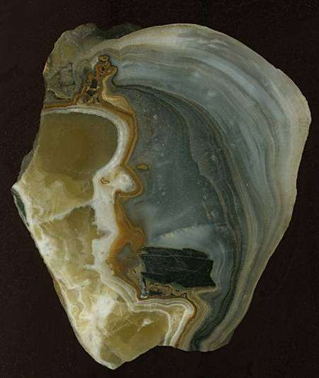 Coupe de la stalagmite de Wanxiang. Crédit AAAS