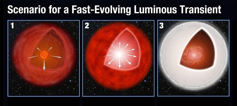Illustration du scénario probable expliquant les Felt. D'abord, la géante rouge en fin de vie expulse de la matière formant ainsi plusieurs couches tout autour d'elle (1). L'étoile s'effondre sur elle-même (2) et explose en supernova. L'onde de choc frappe la coquille et l'illumine (3). © Nasa, ESA, A. Feild (STScI)