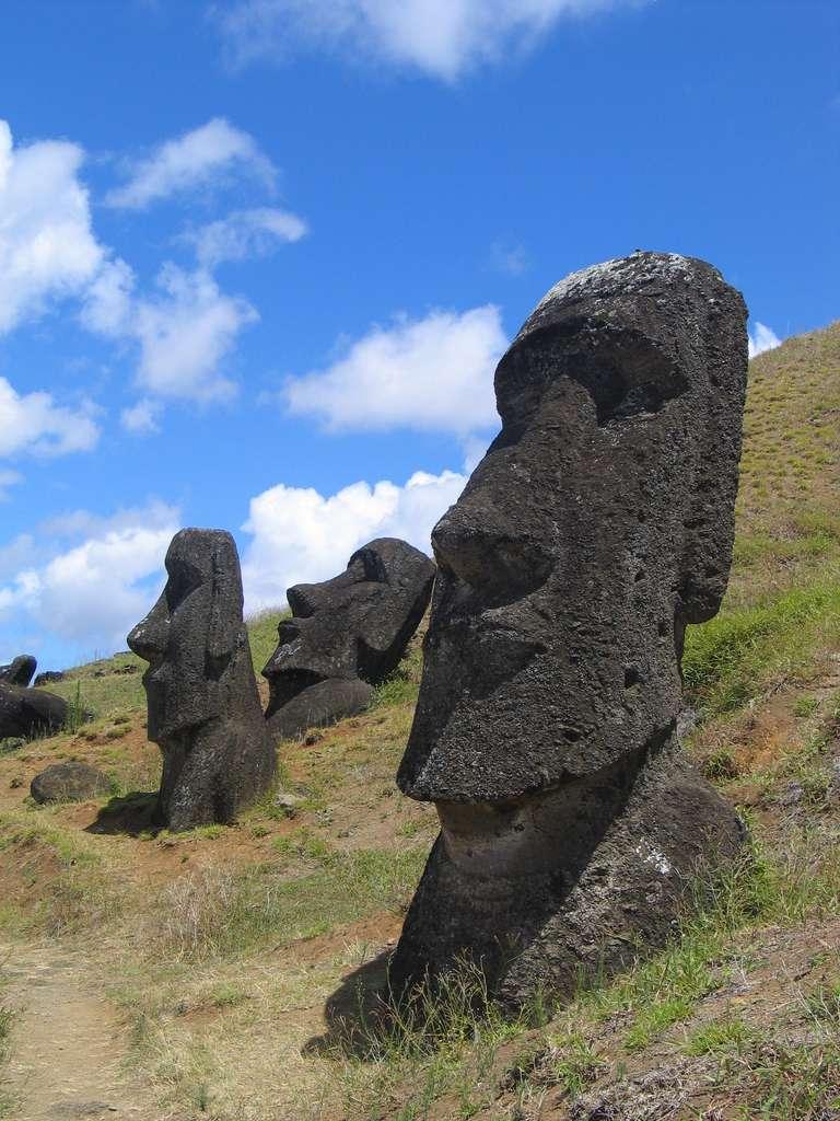 En 1975, la rapamycine fut découverte sur l'île de Pâques, Rapa Nui en polynésien. Cet antibiotique inhibe la protéine mTOR qui intervient dans la croissance et la survie de la cellule. © Wikimedia Commons, DP