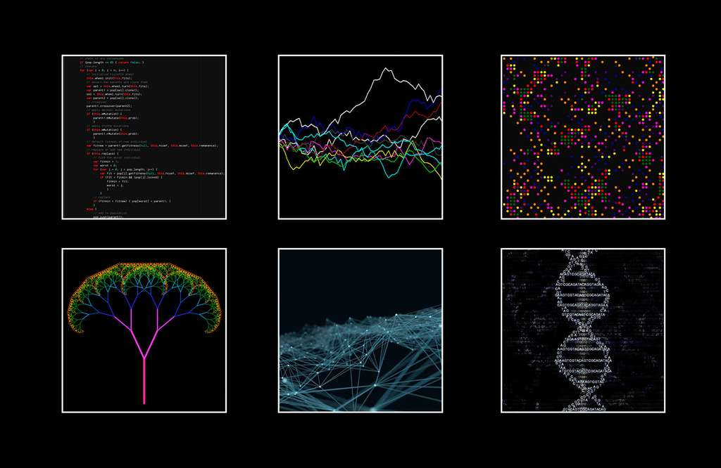 Les différents algorithmes intégrés dans Angelia. © J.-C. Heudin