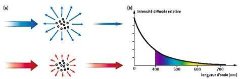 Fig. 3. La diffusion de la lumière traduit le fait qu'un faisceau incident de lumière parallèle est renvoyé en partie dans d'autres directions de l'espace lorsqu'il rencontre une suspension de particules. La figure (a) correspond au cas où leur taille est inférieure au dixième de la longueur d'onde de la radiation incidente : la diffusion est beaucoup plus efficace dans le bleu que dans le rouge. L'intensité de la lumière diffusée varie de fait comme l'inverse de la puissance quatrième de la longueur d'onde (b). © DR