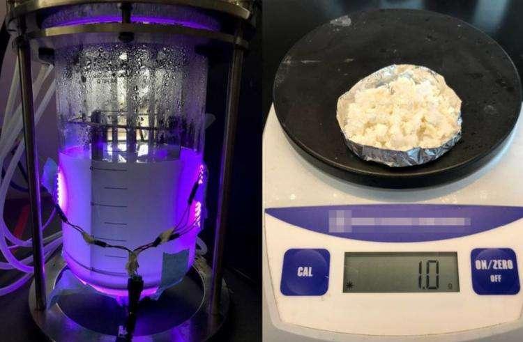 Lorsque les boîtes quantiques sont activées par de la lumière verte, les microbes produisent de l'ammoniac. Lorsqu'elles sont activées par de la lumière rouge, elles fabriquent du plastique comme celui en photo ici. © Nagpal Lab, Université du Colorado à Boulder