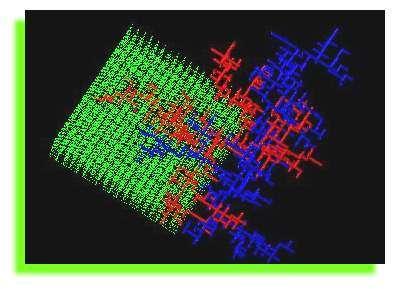 Image de croissance de vaisseaux sanguins à trois dimensions par DLA entrelacé. Un premier arbre (rouge) se forme en descendant les petits tuyaux qui voient le plus de circulation. Peu à peu, les vaisseaux principaux se déconnectent, et un second arbre (les veines) croît en remontant les tuyaux qui voient le plus de circulation (vers la sortie). © Vincent Fleury