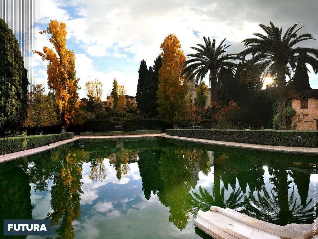 Jardin de l'Alhambra Grenade - Espagne