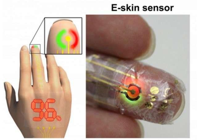 Le prototype de capteur se compose d'un photodétecteur organique relié à des Pled rouges et vertes qui reflètent le taux d'oxygénation du sang et le pouls. © Someya Laboratory