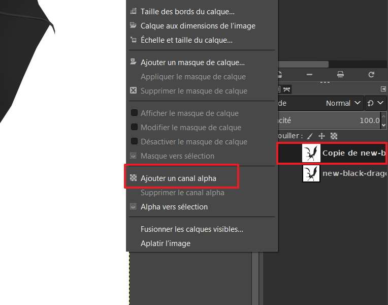 Ajouter un canal alpha permet d'activer la transparence. © The GIMP Team