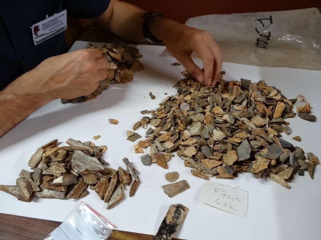 Recherche dans les caisses issues des fouilles des années 70 à La Ferrassie, entreposées au Musée d'Archéologie nationale, Saint-Germain-en-Laye. Des milliers de restes osseux ont été triés et 47 nouveaux restes fossiles appartenant à La Ferrassie 8 ont été reconnus. © Antoine Balzeau, CNRS, MNHN