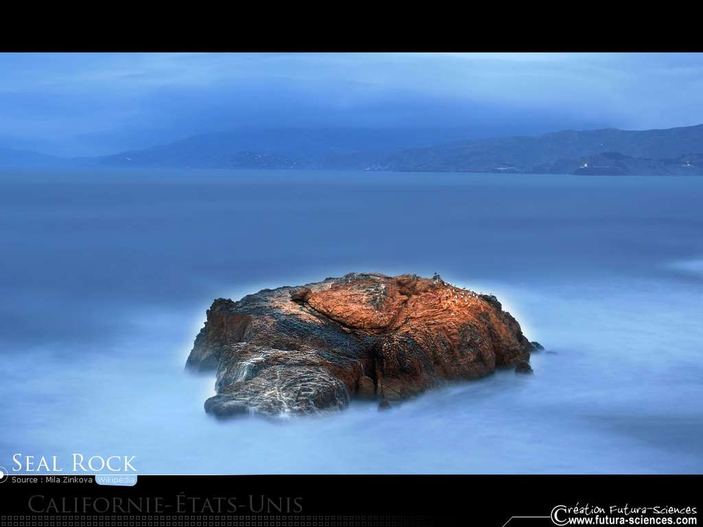 Ile Seal Rock